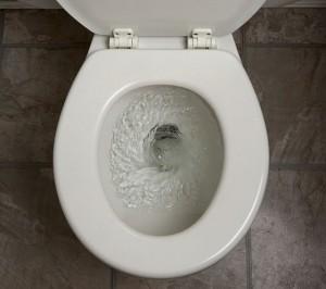 toilet_flushing_5